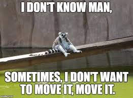 i don t know man sometimes i don t want to move it move it meme