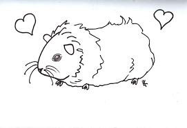 guinea pig coloring page eson me
