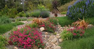 best 25 california native landscape 100 fruit trees landscape design 30 best design and