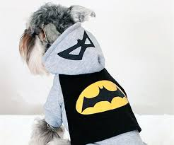 batman dog hoodie cool sh t i buy