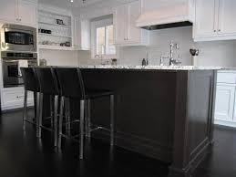 Danze Opulence Kitchen Faucet Bianco Antico Granite Transitional Kitchen Redroze U0027s Renos
