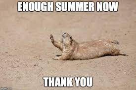 Hot Weather Meme - 22 hot weather memes that ll help you cool down sayingimages com