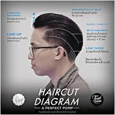 quiff haircut diagram color