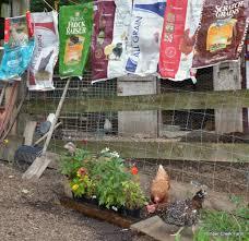 Backyard Chicken Magazine by Chicken Feed Does Brand Matter Backyard Poultry Magazine