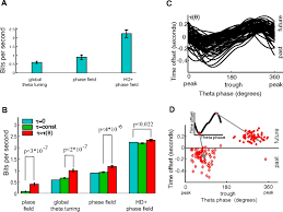 theta mediated dynamics of spatial information in hippocampus