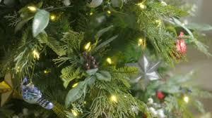 ed on air santa s best 6 5 bay leaf tree by degeneres