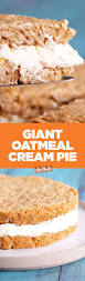 Crustless Pumpkin Pie Recipe South Africa by 17 Best Images About Pies Quiches U0026 Tarts On Pinterest Cream
