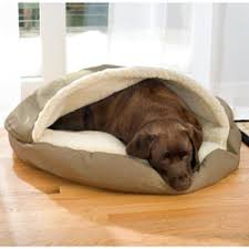 awesome dog bed my vizsla loves to hide in his cozy cave dog