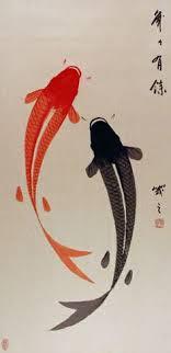 Different Koi Fish Meanings Japanese Koi Wallpaper Yes Koromo Eclipse Designer