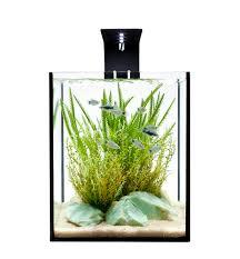 aquarium design group effective aquascape design in a desktop