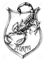 scorpion stock photos u0026 pictures royalty free scorpion images and