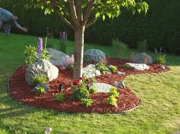 Backyard Rock Garden by Easy Diy Landscaping Build A Rock Garden Rock Gardens And
