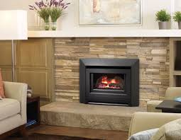 Propane Fireplace Heaters by Propane Fireplace Heaters For Homes Laura Williams