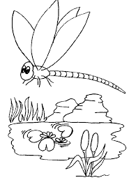 kids dragonfly animal coloring page animal coloring pages of