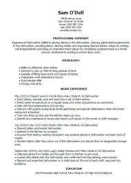 Dishwasher Description For Resume Resume For Sap Mm Consultant E Commerce Sales Manager Resume Help