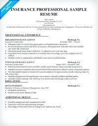 insurance resume exles insurance resume exles insurance resume sle