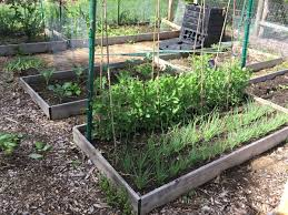 the plot in may vegetables