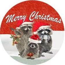 aceo print raccoon snow bird baby