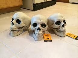 Life Size Plastic Skeleton Halloween by I U0027m Impressed With Walgreens U0027 3 99 Halloween Skulls Imgur