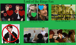 What I Actually Do Meme - lord of the rings fan what i really do meme by miraclegg on deviantart