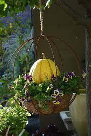 best 25 fall hanging baskets ideas on pinterest harvest