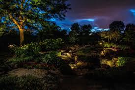Low Light Outdoor Plants A Sunset Serenity Night Light Inc