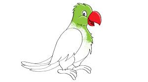 draw parrot color