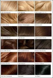 nice n easy hair color chart best 25 redken color chart ideas on pinterest shades eq color