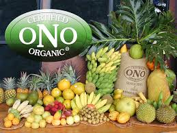 organic fruit delivery ono organic farms hawaii tropical fruit coffee local