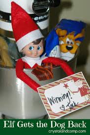 elf on the shelf ideas that include the dog