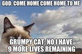 Grumpy Cat No Memes - grumpy cat sky meme imgflip