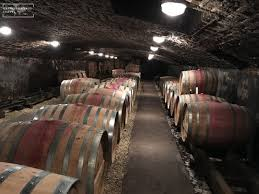Burgundy Wine Cellar - no questions asked this biking trail is the best way to see the