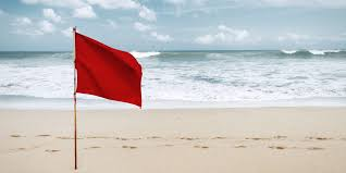 Red Flags Shannon Smith Author At Plentyoffish Blog