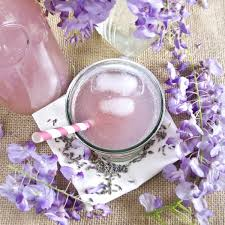 lavender tea buy lavender tea benefits how to make side effects herbal teas