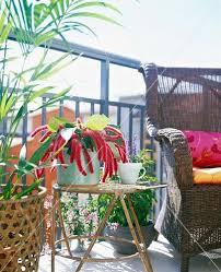 palme f r balkon balkon beistelltisch 48 images pflanzen als sichtschutz fr