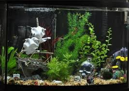 fish tank decoration ideas plus aquarium castles and buildings plus