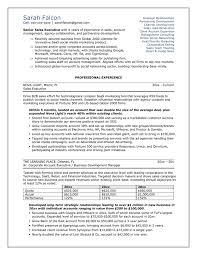 professional resume template vnzgames free resume templates