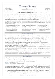 Security Resumes Examples by Director Of Security Resume Examples Resume Sample