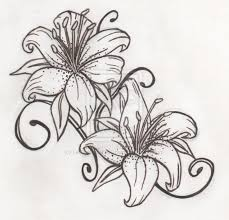 black and white tiger lily sketch tattoo tattoomagz