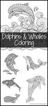 dolphins whales coloring pages 1 1 1 u003d1