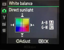 how to choose colors how to choose the correct white balance for star trail photography