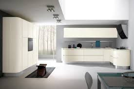 hotte de cuisine blanche design interieur idées conseils utiles cuisine blanche moderne