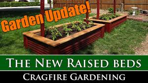 new raised beds and tomatoes for 2016 youtube