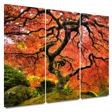 wall designs discount wall black japanese maple tree