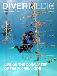 diver medic issue 9 november 2016 by diver medic and aquatic