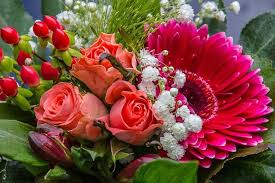 Flowers Of The Month List - cut flower production