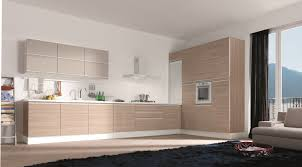 elegant wood veneer kitchen cabinet in european style kitchen
