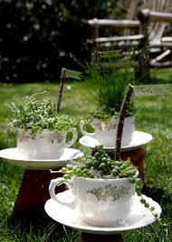 decorate your own tea cup plant a teacup garden hgtv