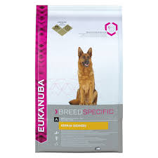 belgian sheepdog vs german shepherd eukanuba dry dog food for german shepherd chicken dog