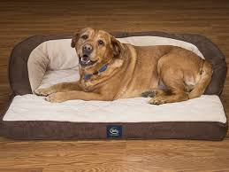 serta couch dog bed with gel memory foam